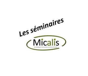 Projet collaboratif INRA Micalis FInE / CNRST de Rabat - Jeudi 27 juin 2019 9h30
