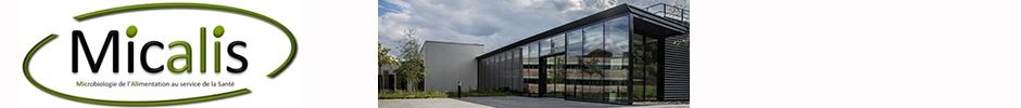 MICALIS Institute