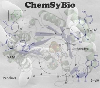 Biochimie et Biochimie Synthétique / Olivier Berteau