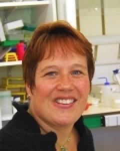 Christine Mézange